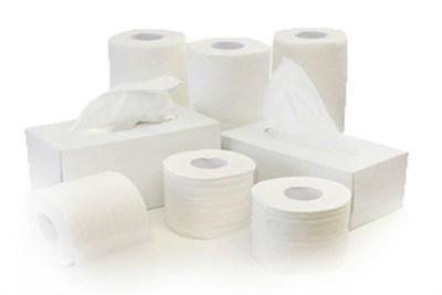 Wholesale Toilet Paper : Home atlas toilet paper